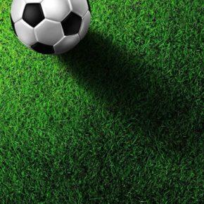 Спортивные газоны